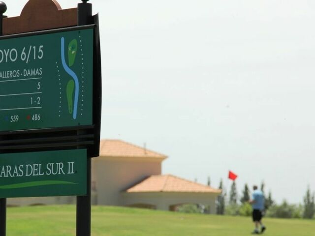 1 golfg